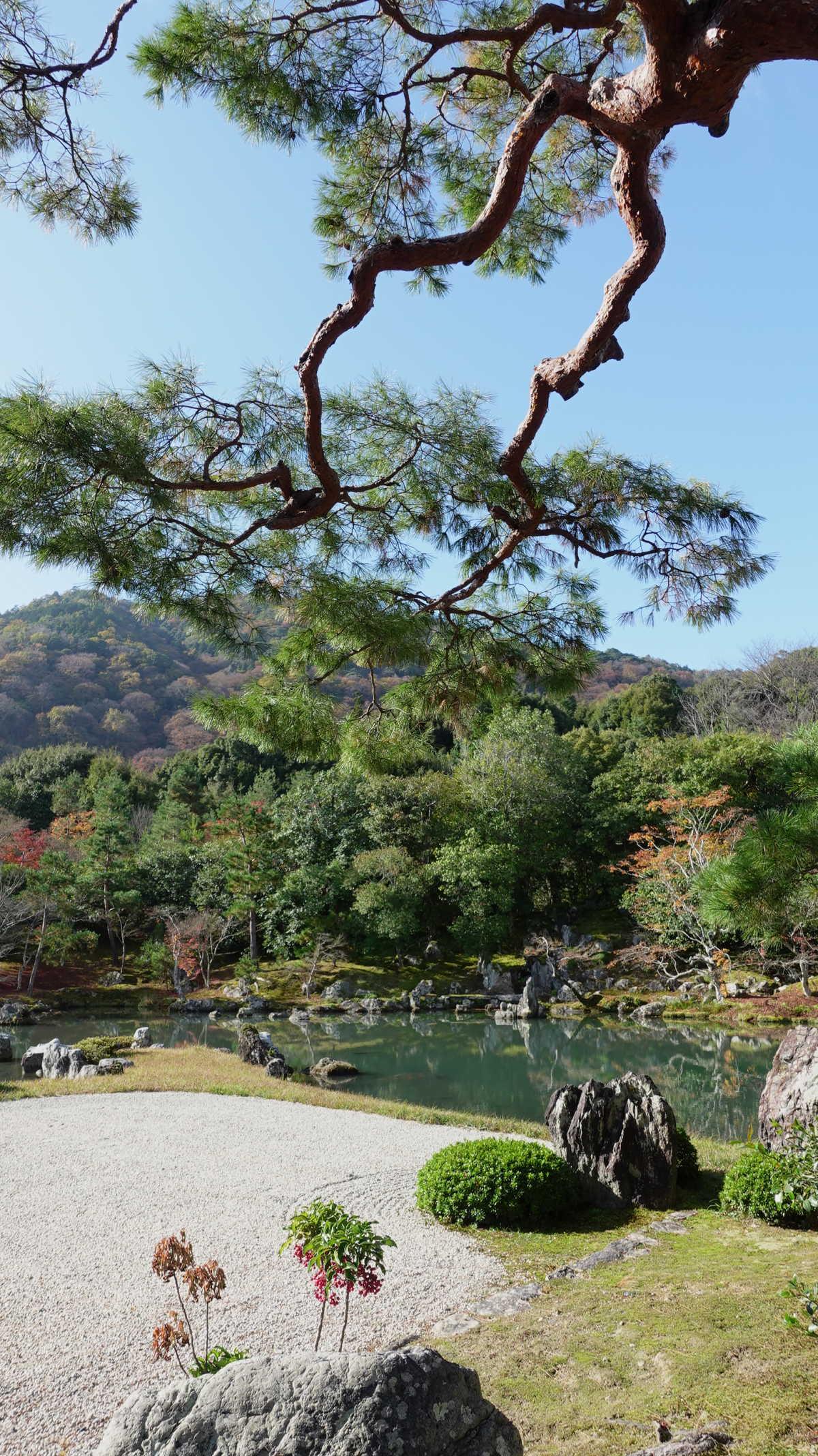 庭園が世界遺産に登録されている天龍寺にて京都の紅葉を味わう - TRIPROUD