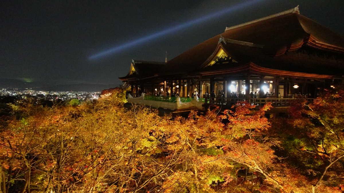 【京都】紅葉ライトアップが最強に綺麗な清水寺 - TRIPROUD
