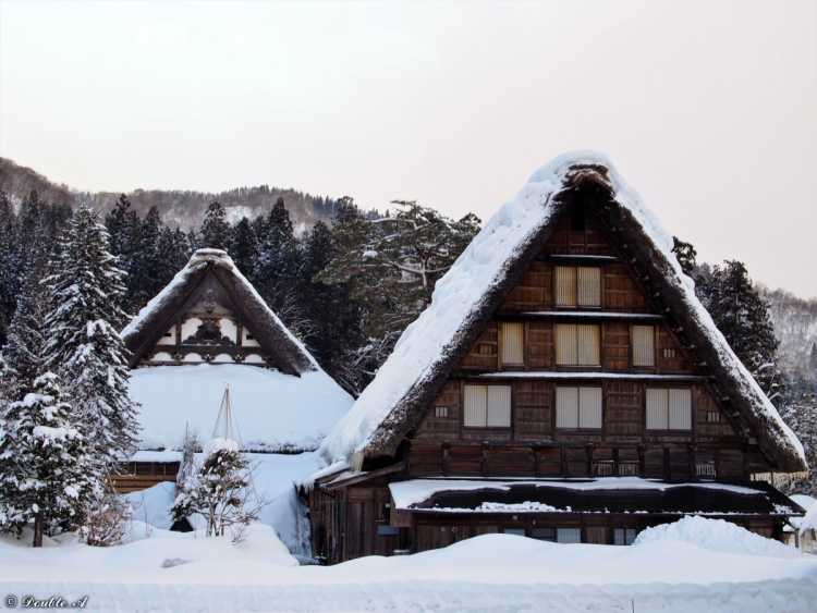 A Temple With 'Gassyo' Pose!  Only One In Japan, Myozen-ji Temple Has A Steep Roof   Review of Shirakawago