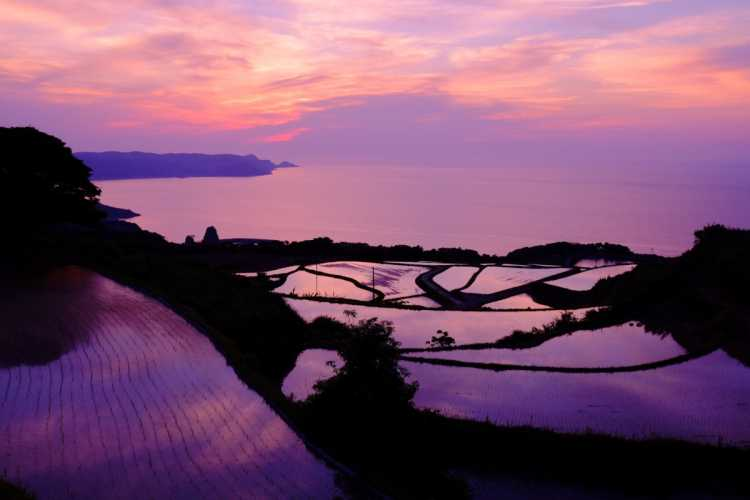 The Evening Glow On The Terraced Paddy Fields   Review of Higashiushirobata Terraced Rice Fields