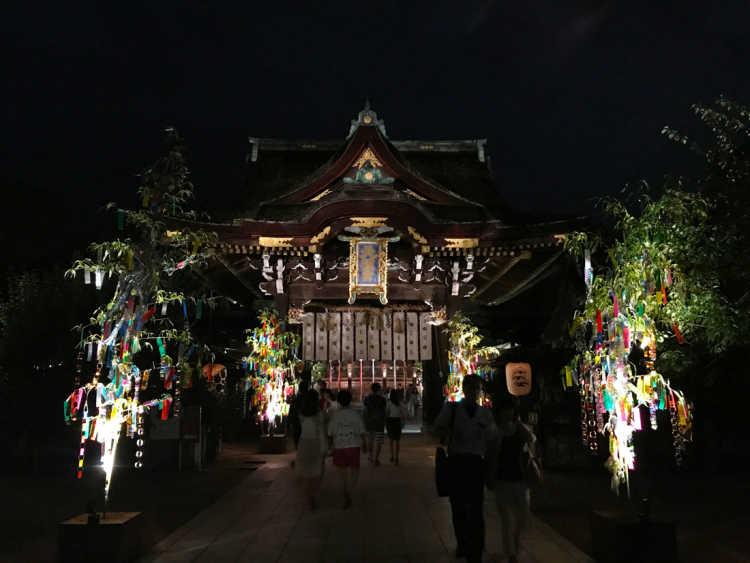 夜空に浮かび上がる本殿と笹の葉のコントラスト「京の七夕」 | 北野天満宮の口コミ