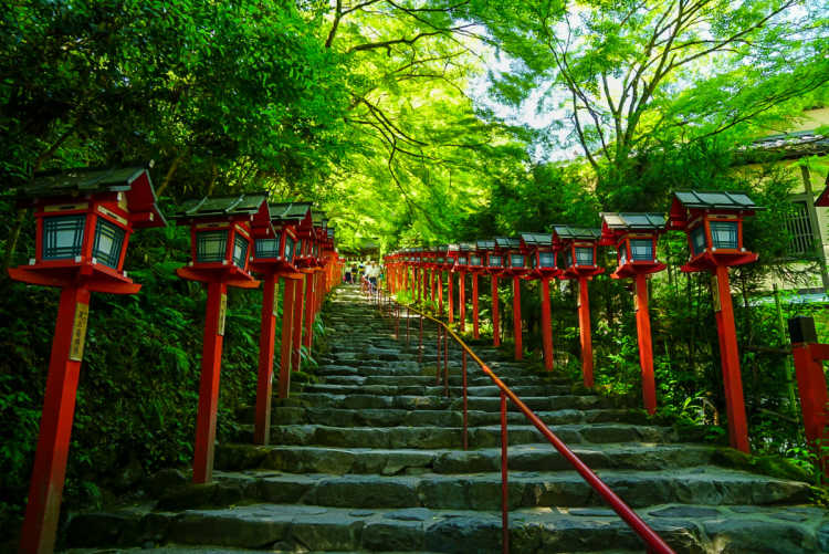 Beautiful Red Among Fresh Greens In Moist & Tense Air | Review of Kifune Shrine