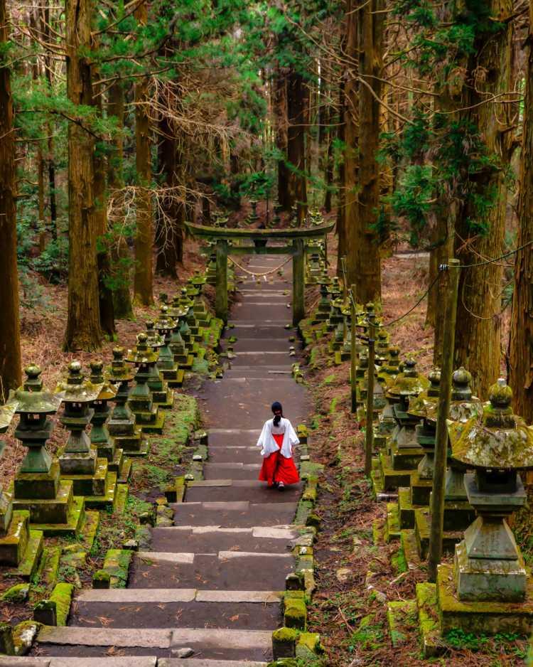 まるでジブリにでてきそうな神秘的な世界   上色見熊野座神社の口コミ