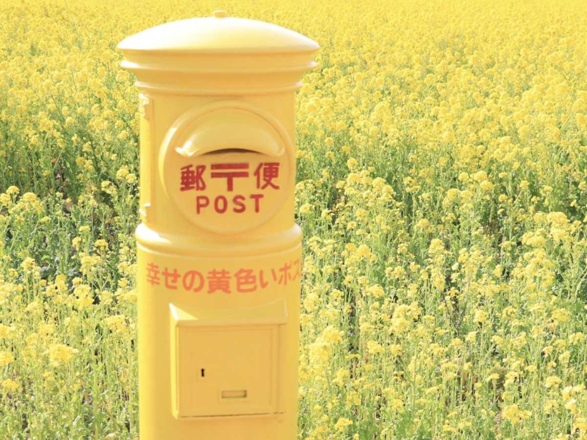 一面黄色い世界。幸せの黄色いポスト   伊良湖菜の花ガーデンの口コミ ...